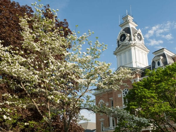View of Central Hall through some blooming trees.