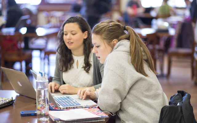 A pair of students studying together.