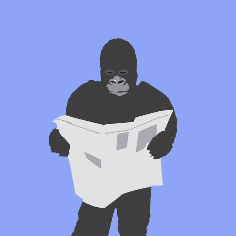 Gorilla reading newspaper