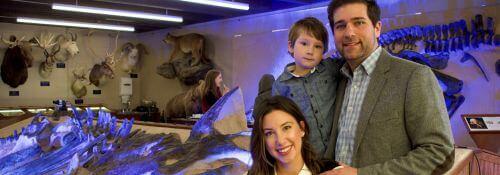 Fisk Museum Acquires Triceratops Skeleton